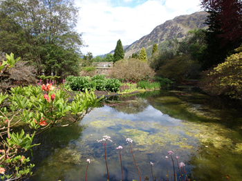 link to Photo Album of Benmore Botanic Garden